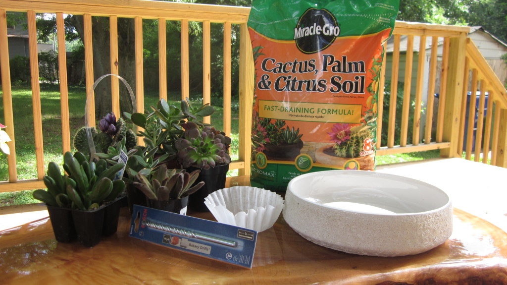 succulent gardening supplies, materials, what you need to plant your own garden