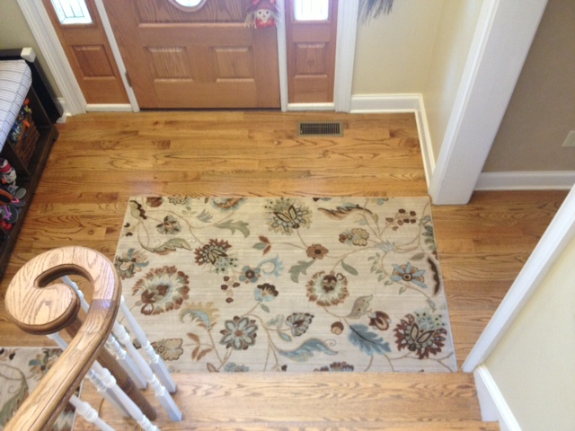 hallway rug, rug with pets, rug good with pets, pet friendly rugs, american rug craftsmen rug, sol star rug, sol star butter pecan