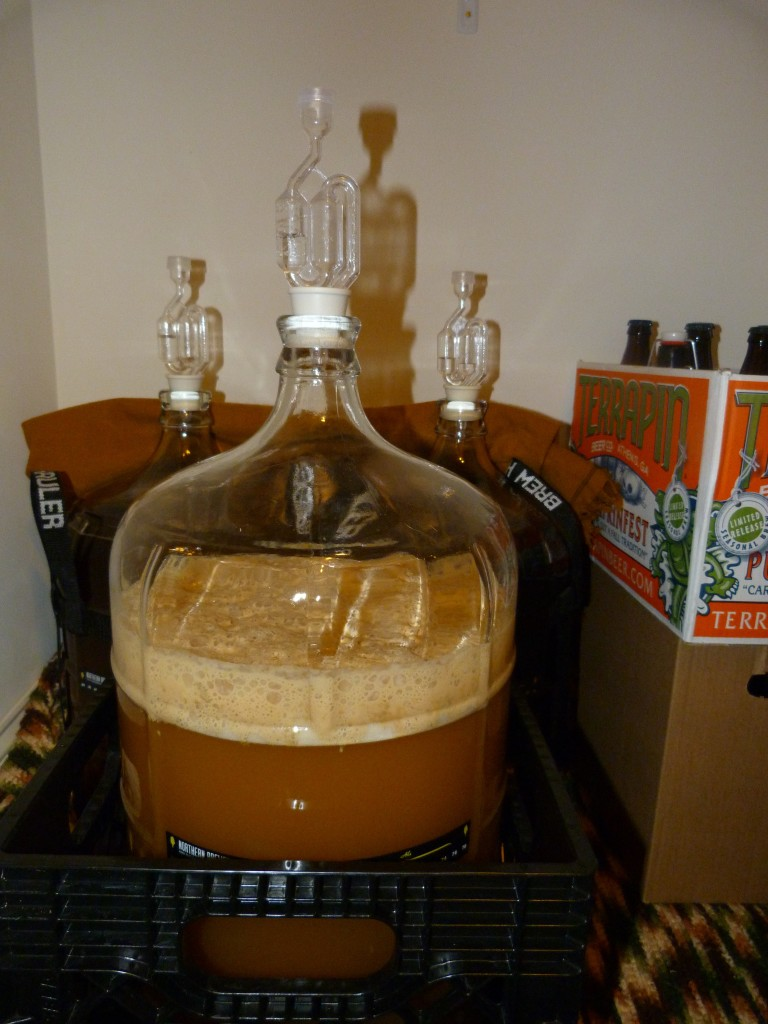 active fermentation, beer brewing, home brewed beer, home brewing, cream ale