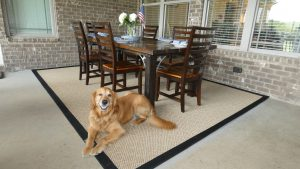 Pet-friendly indoor/outdoor area rug from Mohawk Home