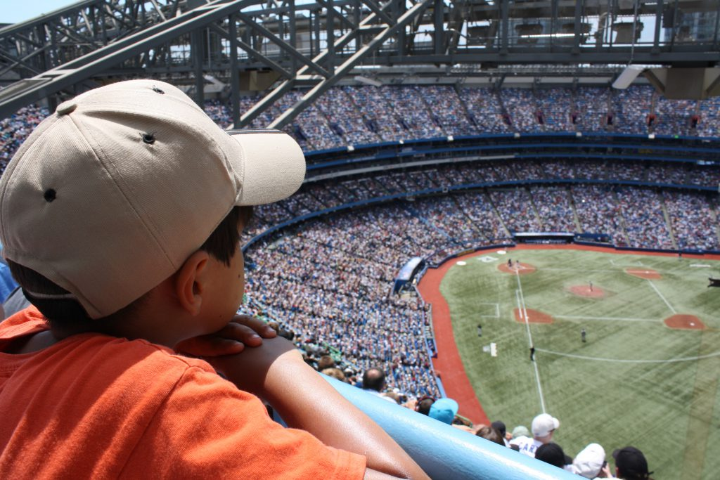 baseball game and other Staycation ideas on Mohawk Homescapes